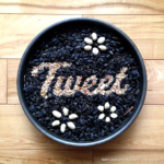 'Tweet' Experimental Typography